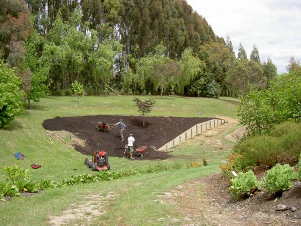 Landscaping in root protection areas