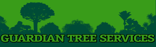 The new chipper and some recent jobs! ::. Palmerston North Tree Services, Guardian Tree Services